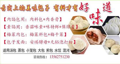 河北肉馅包子素馅包子调料专用包子调料-济宁市天园食品有限公司