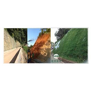 河南景绣边坡绿化 客土喷播植草服务周到