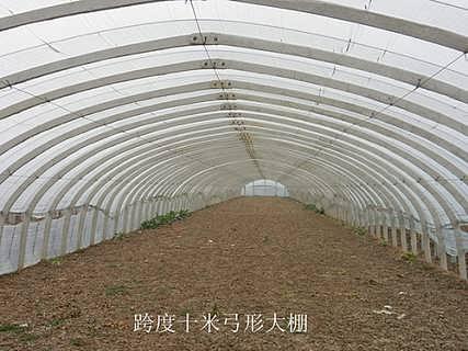 潍坊温室大棚骨架生产厂家-寿光市悠然温室骨架厂