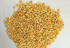 四川声誉酒厂诚意求购玉米小麦碎米糯米木薯淀粉
