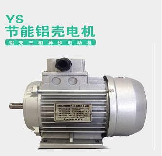 上海德东YS铝壳电机 YS100L1-4