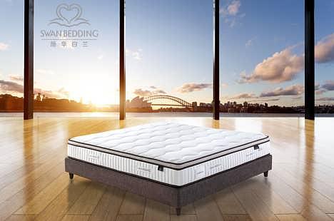 进口床垫品牌哪个好-施华白兰-去除床垫螨虫的办法