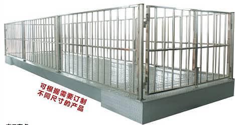 防腐动物秤,称猪的、称牛的、称羊的畜生/牲畜电子秤规格/价格/厂家批发