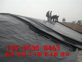 梧州塑料防渗膜 聚乙烯土工膜 塑料薄膜