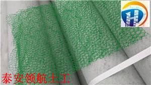 武汉三维植被网生产厂家价格情况