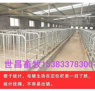 批发加厚母猪限位栏带钢板食槽的价格是多少-泊头市世昌畜牧机械有限公司.