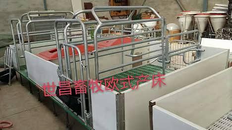 直销国标管热镀锌双体母猪产床沧州生产厂家专业加工定制-泊头市世昌畜牧机械有限公司.