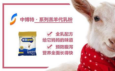 给羔羊吃的奶粉品牌好