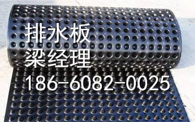 济南塑料排水板集团欢迎你-泰安植草格 梁冉