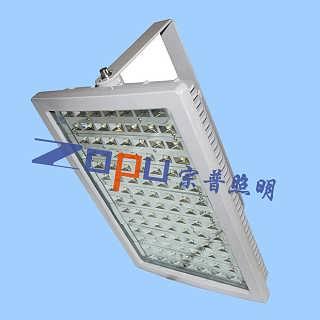 LED固定灯具80W防爆-武汉宗普照明科技有限公司