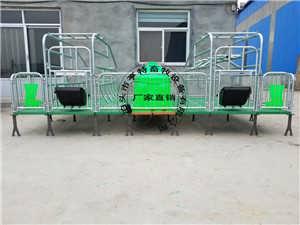 养猪设备复合连体母猪产床焊接猪架子厂家发货
