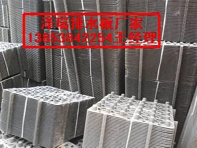 湖南排水板,衡阳屋面种植阻根板规格全-泰安市永立防水卷材有限公司