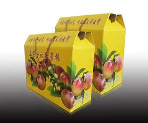 纸箱纸盒定制批发厂家水果包装盒手提绳彩色礼盒包装