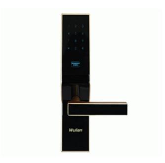 镇江物联WL-ZLSDBMT-B110-01智能密码卡锁厂家直销