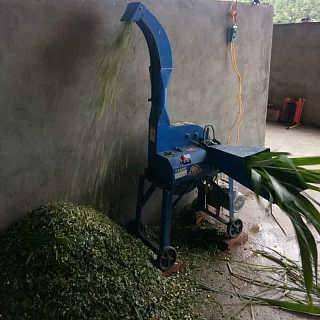 电动饲料铡断机 小型秸秆铡草机-曲阜市鲁宏机械设备有限公司