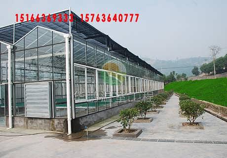 寿光玻璃阳光板温室-寿光华鹏温室工程有限公司