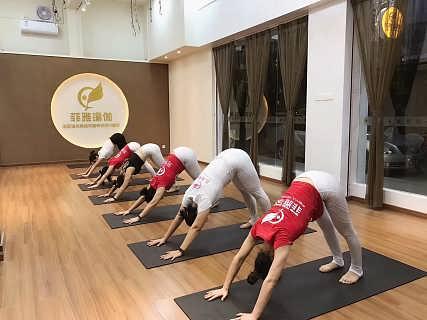 东莞沙田零基础瑜伽教练班探究产后瑜伽对身体的好处-东莞市石龙菲雅成人舞蹈培训部