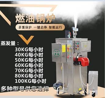 0.1吨燃油蒸汽发生器