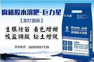 龙灯生物腐植酸水溶肥,生根壮苗,吸盐调酸,增效高产