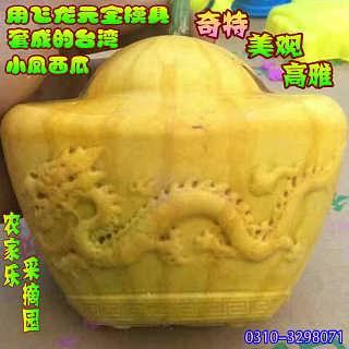 飞龙元宝形水果模具人参果成型水果甜瓜定型模具文玩范制大形葫芦模具包邮