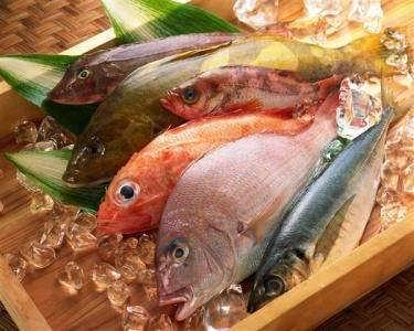 武汉港进口丹麦海鲜水产品进口报关