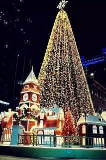 专业大型圣诞树大型仿真圣诞树厂家