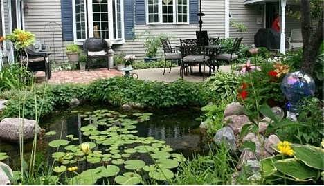 济南小型家庭鱼池济南水泥鱼池长青苔济南家庭鱼池清洗