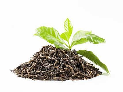 茶叶加工应用的膜分离技术