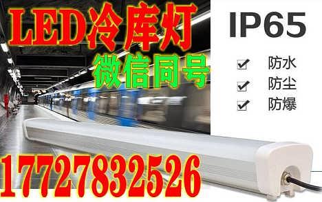 山东led食品车间冷库灯-深圳市美创芯照明有限公司-业务部