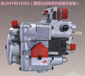 康明斯PT燃油泵3655213WB250搅拌机柴油泵NTA855-C335