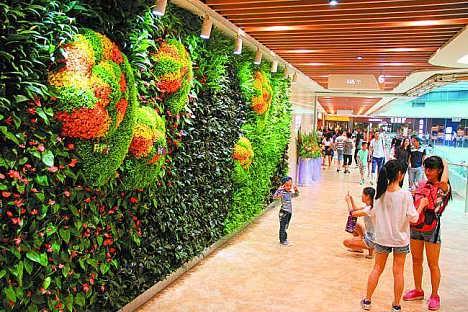 石家庄绿植植物墙定做-石家庄铭秀立体种植有限公司