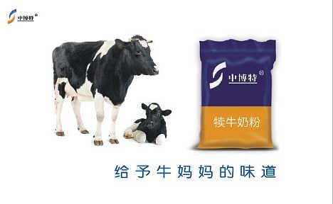 饲喂小牛时喝的奶粉代乳粉哪家好-北京中博特生物技术工程有限公司--