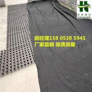 廊坊2公分蓄排水板1.0厚高分子车库排水板-泰安市绿泰建材有限公司.