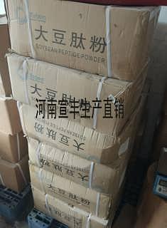 食品级大豆肽粉价格 胶原蛋白肽厂家