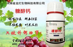 龙灯生物糖醇钙,草莓软果,叶果补钙