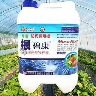 草莓瓜果蔬菜微生物菌肥强力生根改善土壤环境抗重茬芽孢杆菌防烂根