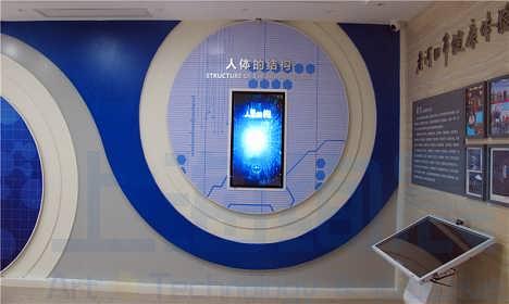 数字人体系统互动软件科普科教软件健康生命科普馆多媒体软件设备-上海绚晨展示工程技术有限公司