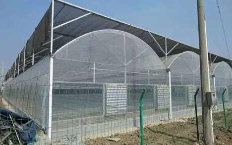 薄膜连栋温室建设厂家
