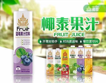 【椰泰罐装椰汁】加盟代理项目详情-广州市贝奇饮料有限公司