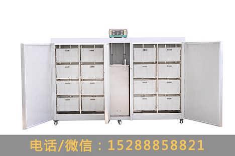 大型商用豆芽机,多功能芽苗菜机械设备,一台全自动小型豆芽机器