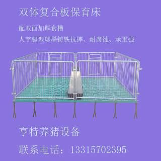亨亚厂家供应养猪设备 小猪保育床猪用保育床 复合材质仔猪保育床-泊头市亨亚机械设备有限公司