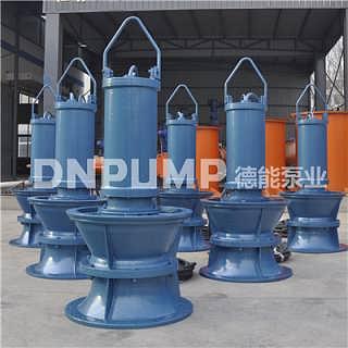 旧泵站改造立式轴流泵改型设计方案-德能泵业(天津)有限责任公司