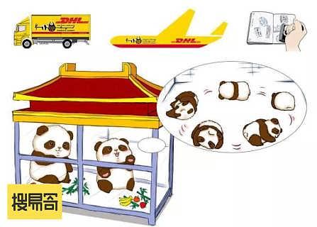 dhl汕头亚马逊FBA运输公司 亚马逊FBA服务站-广东搜易寄科技有限公司
