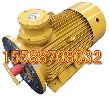 YBBP-450-4隔爆型变频调速三相异步电动机产品说明书