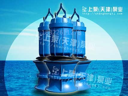 QZ轴流泵价格,轴流泵厂家
