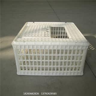 活禽运输笼  成鸡转运笼  蛋鸭周转笼