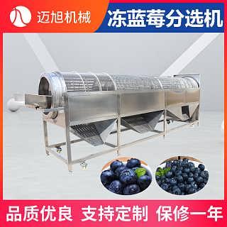 滚筒式冻蓝莓分级分选机厂家