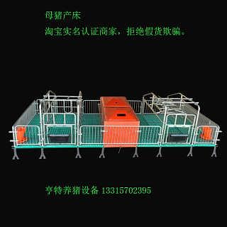 全复合产床母猪设备热镀锌母跟着向着卫生间走去猪产床双体产床产保两竟然是与自己有两面之缘用分娩床