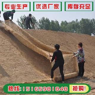 厂家直销椰丝草毯 生态绿化修复植生毯 边坡植草专用草毯