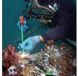壁纸 海底 海底世界 海洋馆 水族馆 327_320